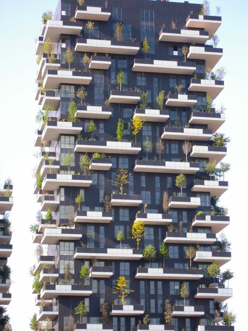 bosco verticale 1